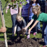 Photo of Arcadia Elementary students planting trees in front of school