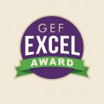 Excel Award logo