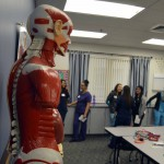Photo of body model at CTE Open House