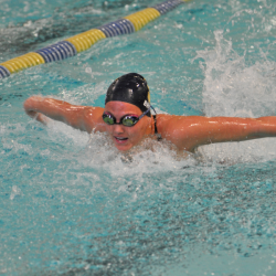 Photo of competitive swimmer in pool lane