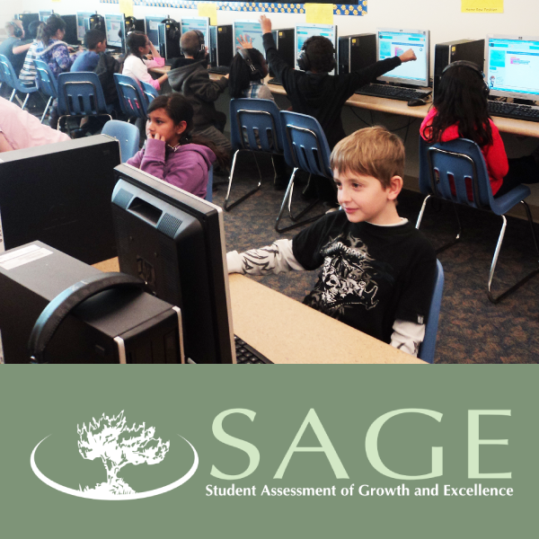 Students working at computers with SAGE logo