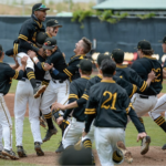Cottonwood High baseball team celebrates win